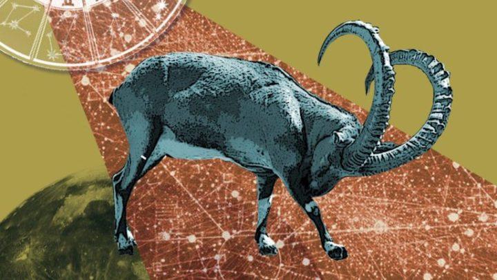 Год Свиньи: общий гороскоп на 2019 для всех знаков Зодиака
