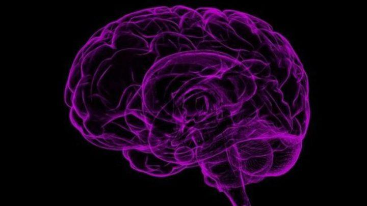 Тест: сколько лет вашему мозгу?