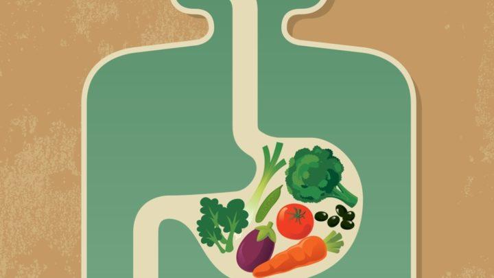 Сколько времени перевариваются продукты, которые вы едите