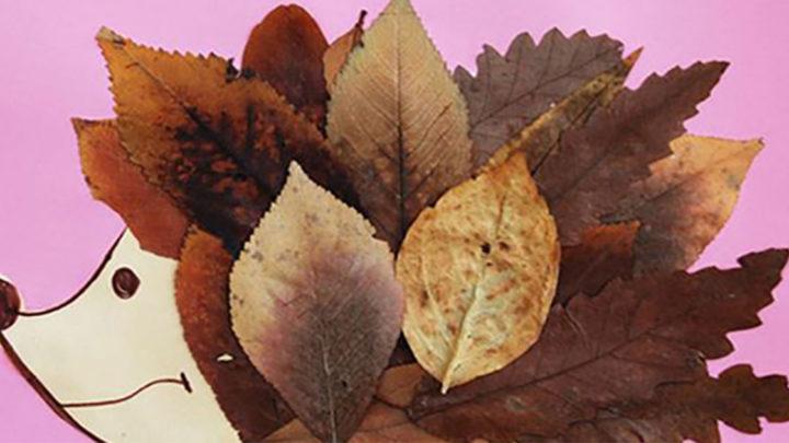 Осень – время собирать листья. 25 увлекательных фото идей