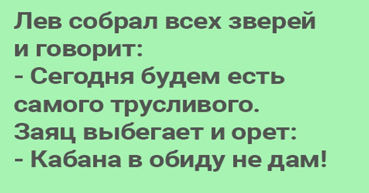 Анекдоты Про Зверей Бесплатно
